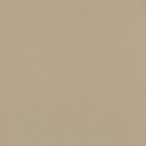 Gạch lát nền Viglacera TS6-602 (60×60cm)